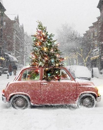 Menu du réveillon de Noël !
